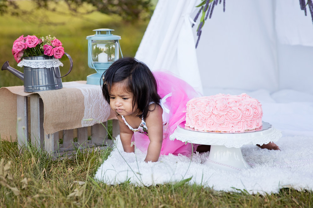 1st Birthday and Cake Smash Photoshoot - A complete DIY experience - Lovemade Handmade